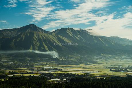 南阿蘇の朝の風景 FYI00260135