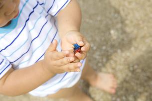 ヤドカリのオモチャを持つ子供 FYI00263305