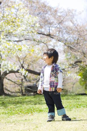 春の行楽と子供 FYI00264288