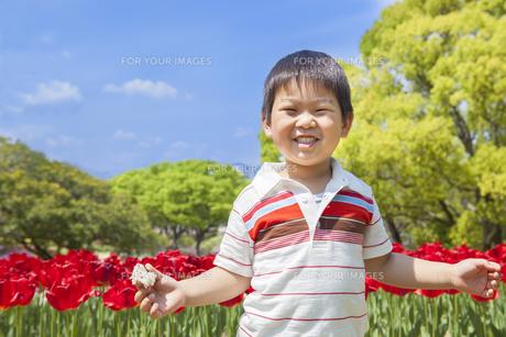 チューリップ畑と笑顔の子供 FYI00264842