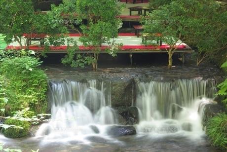 夏の貴船川 FYI00265303