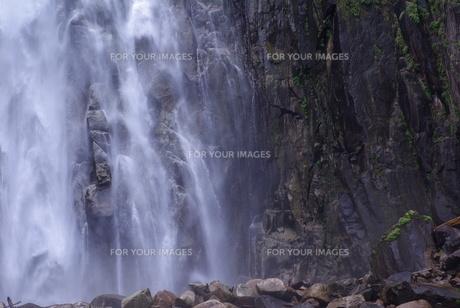 那智の滝 FYI00265584