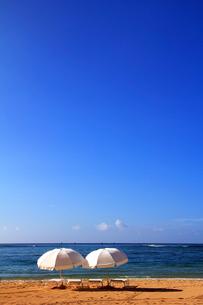 ビーチパラソル FYI00269545