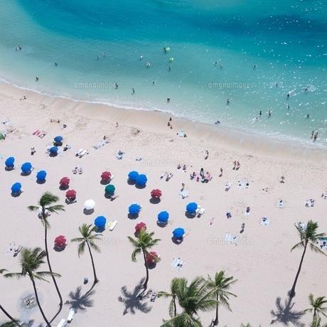 ハワイ ワイキキビーチビーチパラソル FYI00273072