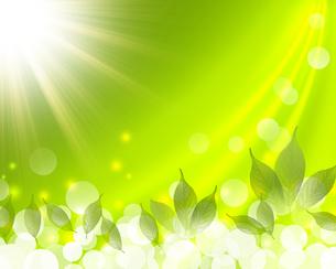 エコロジー FYI00276763