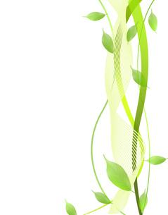 エコロジー FYI00276889