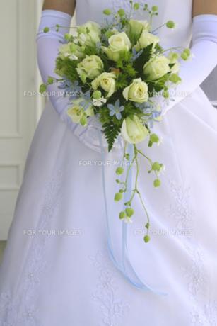 ブーケを持った花嫁の立ち姿 FYI00277834