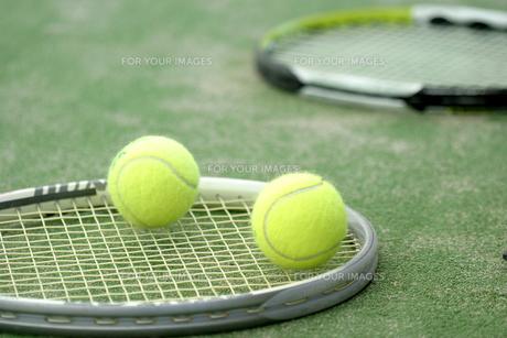 テニス FYI00278520