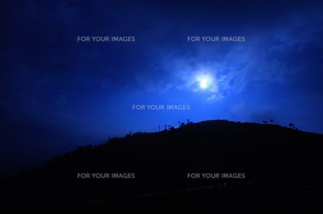 夜空の月 FYI00283660