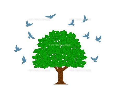 木と群がる鳩 FYI00297850