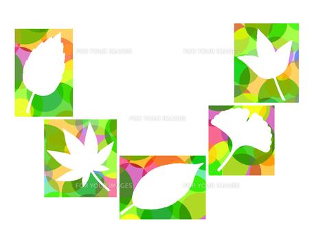 木の葉のイラスト FYI00297932