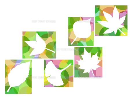 木の葉のイラスト FYI00297937