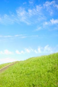 草の土手と青空(縦) FYI00304758