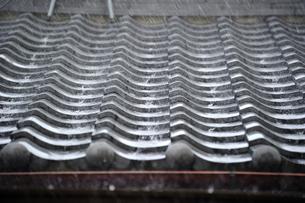 屋根瓦に打ちつける大粒の雨 FYI00304769