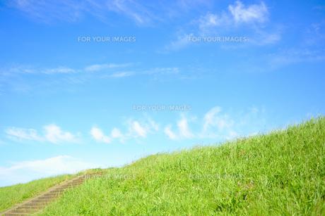 草の土手と階段と青空 FYI00304898