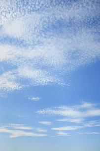 うろこ雲(縦)-2 FYI00304899