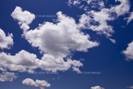 雲 FYI00306743
