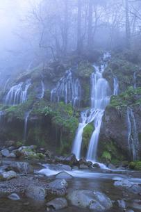 朝霧の吐竜の滝 FYI00307431