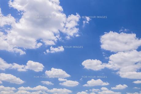 雲 FYI00307528