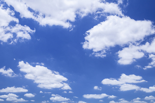 雲 FYI00307538