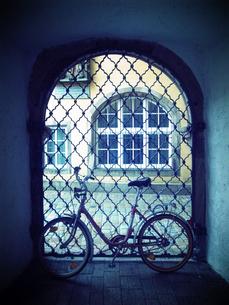 自転車 FYI00310753