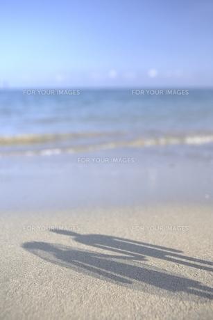 幸せな二人の影 FYI00310784
