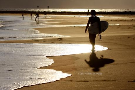 浜辺を歩くサーファー1 FYI00310882