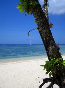 海辺のシャワー FYI00310893