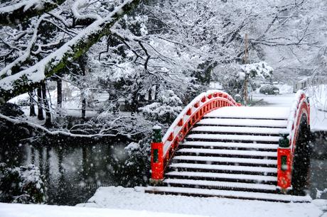 雪の風情 FYI00312417