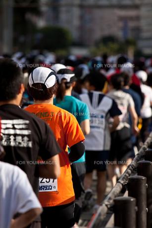 市民マラソン FYI00313099
