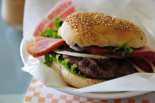 ハンバーガー横 FYI00313256