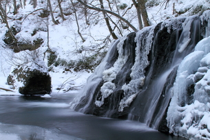 一の滝の冬 FYI00314612