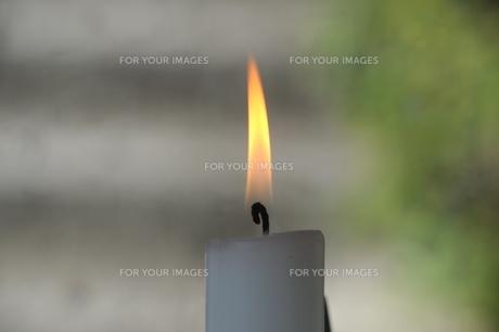 ロウソクの炎 FYI00315378