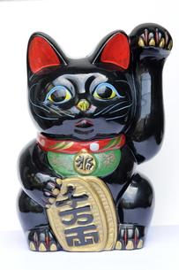 黒招き猫正面 FYI00315411