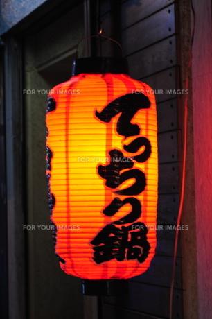 赤提灯てっちり鍋 FYI00316095