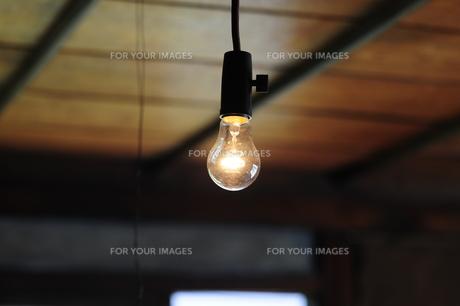 裸電球-10 FYI00316692