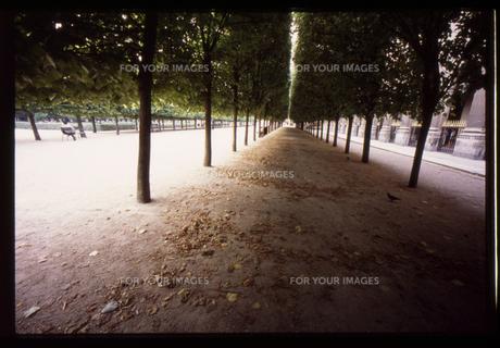 パリ/街角 FYI00317705