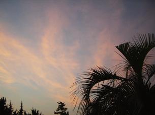海辺の夕空/夕焼け FYI00317730