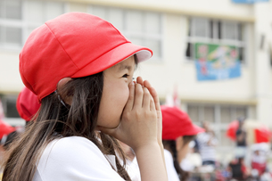 運動会で一生懸命応援する女の子 FYI00318353