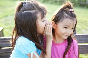 公園で内緒話をする女の子達 FYI00318413