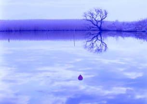 湿原を飛ぶ気球 FYI00319059