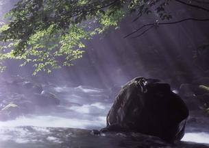 不動の大岩に光降る FYI00319221