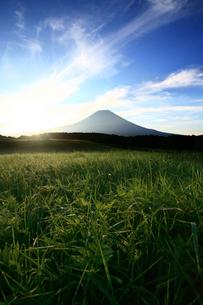 富士山 FYI00321535