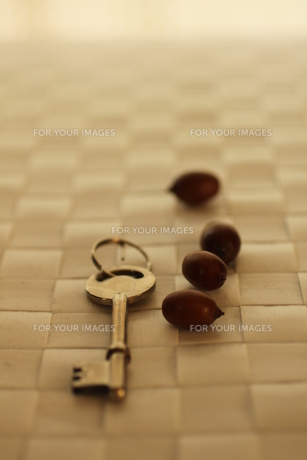 鍵 FYI00321662