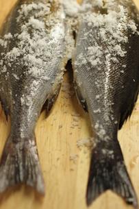魚 FYI00321714
