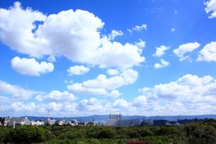 大阪城公園からの眺望 FYI00322059