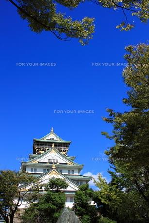 大阪城 FYI00322060