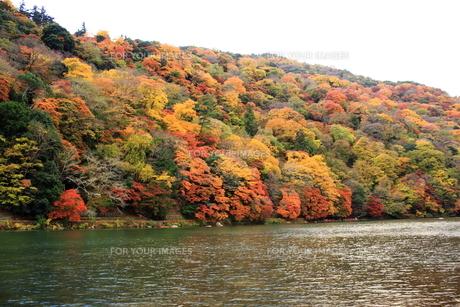 嵐山と保津川 FYI00322089