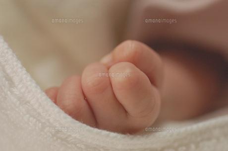 ぎゅっと握った赤ちゃんの手 FYI00322509