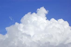 青空と夏雲 FYI00322521
